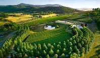 Panorama veiw of Yarra Valley